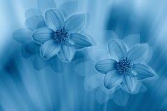 blommor utformade Vektor Illustrationer