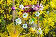 Blommor vår Royaltyfri Fotografi