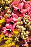 Blommor vattenfärg, Arkivfoton