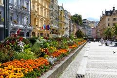 Blommor vid promenaden i Karlovy varierar Arkivbilder