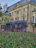 Blommorna och byggnaden arkivbild