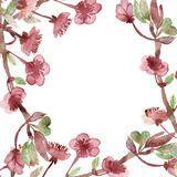 Blomning eller Sakura för härlig vattenfärg körsbärsröd i vår isolerade filialer och rosa blommor på vit bakgrund vektor illustrationer