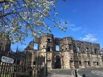 Blomning och en förstörd abbotskloster, Stirling fotografering för bildbyråer
