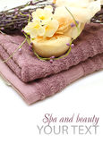 blomningbrunnsortfjäder Royaltyfria Bilder