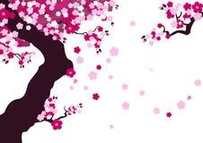blomningCherry stock illustrationer