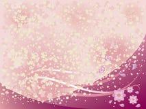 blomningCherry royaltyfri illustrationer