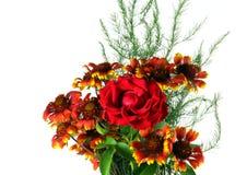 blomningen blommar red steg Arkivbild
