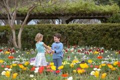 blomningförälskelse royaltyfri bild