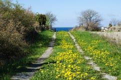 Blomninglandsväg Arkivfoton