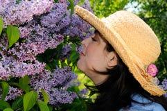 blomninglila Royaltyfri Fotografi
