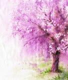 BlomningSakura träd Royaltyfria Foton