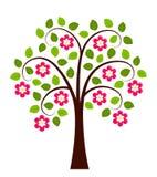 Blomningträd Vektor Illustrationer