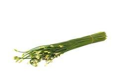 Blomningvitlökgräslökar Arkivbild