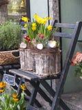 Blomsterhandel med påskliljar Royaltyfri Bild