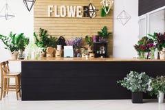 Blomsterhandelinre, små och medelstora företag av studion för blom- design Royaltyfri Foto