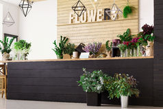 Blomsterhandelinre, små och medelstora företag av studion för blom- design Arkivfoto