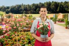 blomsterhandlare royaltyfri bild