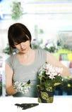 blomsterhandlare Fotografering för Bildbyråer