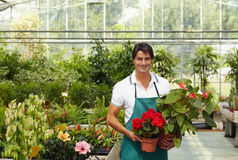 blomsterhandlare arkivbild