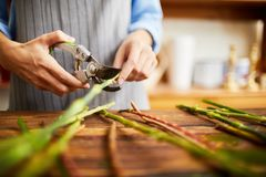 Blomsterhandlare Cutting Stems Closeup arkivfoton