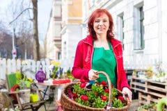 Blomsterhandlare som levererar korgen av blommor eller altfiolen Royaltyfria Bilder