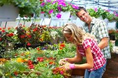 blomsterhandlarefolk Royaltyfria Bilder