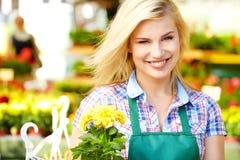 Blomsterhandlarekvinna som arbetar med blommor Arkivfoton