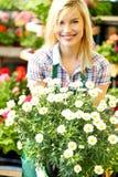 Blomsterhandlarekvinna som arbetar med blommor Fotografering för Bildbyråer