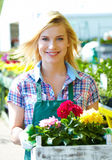 Blomsterhandlarekvinna som arbetar med blommor Arkivbild