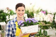 Blomsterhandlarekvinna som ler med vita blommor för vide- korg Arkivbild