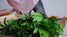 Blomsterhandlaren förbereder hjälpmedel för att skapa en härlig bukett Mot bakgrunden av grönska lager videofilmer