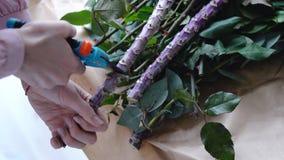 Blomsterhandlaren klipper av den överskott stora filialen av den exotiska blomman med en pruner Royaltyfria Bilder