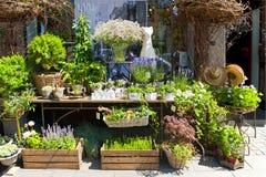 Blomsterhandlaren shoppar Royaltyfri Foto