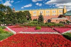 Blomsterrabatt i Alexander den trädgårds- near MoskvaKreml, Ryssland Arkivbilder