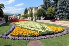 Blomsterrabatt med ljusa färger Fotografering för Bildbyråer