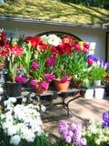 blomsterutställning Arkivbild