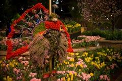 blomsterutställningkalkon royaltyfri fotografi