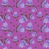 Blomstra lilan på purpurfärgad bakgrund Lila filialblommateckning, illustration vektor illustrationer