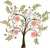 Blomstra trädet, Royaltyfri Bild