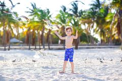 Blond adorable gorgeous little kid boy having fun on Miami beach, Key Biscayne. Happy healthy cute child playing with. Sand and running near ocean. Palms