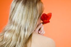Blond And Tulip Stock Photography