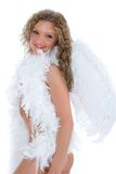 Blond Angel Royalty Free Stock Photo