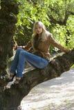 Blond auf Zweig Lizenzfreies Stockfoto