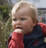 Blond baby child. Looking at something Royalty Free Stock Photo