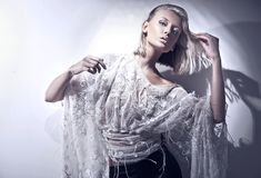 Blond beauty Royalty Free Stock Images