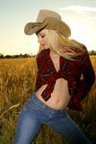 Blond beauty. Blond glamour model posing in western wear Stock Image