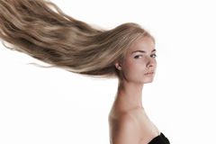 Blond beauty on white Royalty Free Stock Image