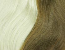 Blond and black hair as texture background Stock Image