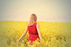 Blond, Blonde, Blur Royalty Free Stock Photos