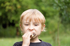 The blond boy is eating a cake Stock Images